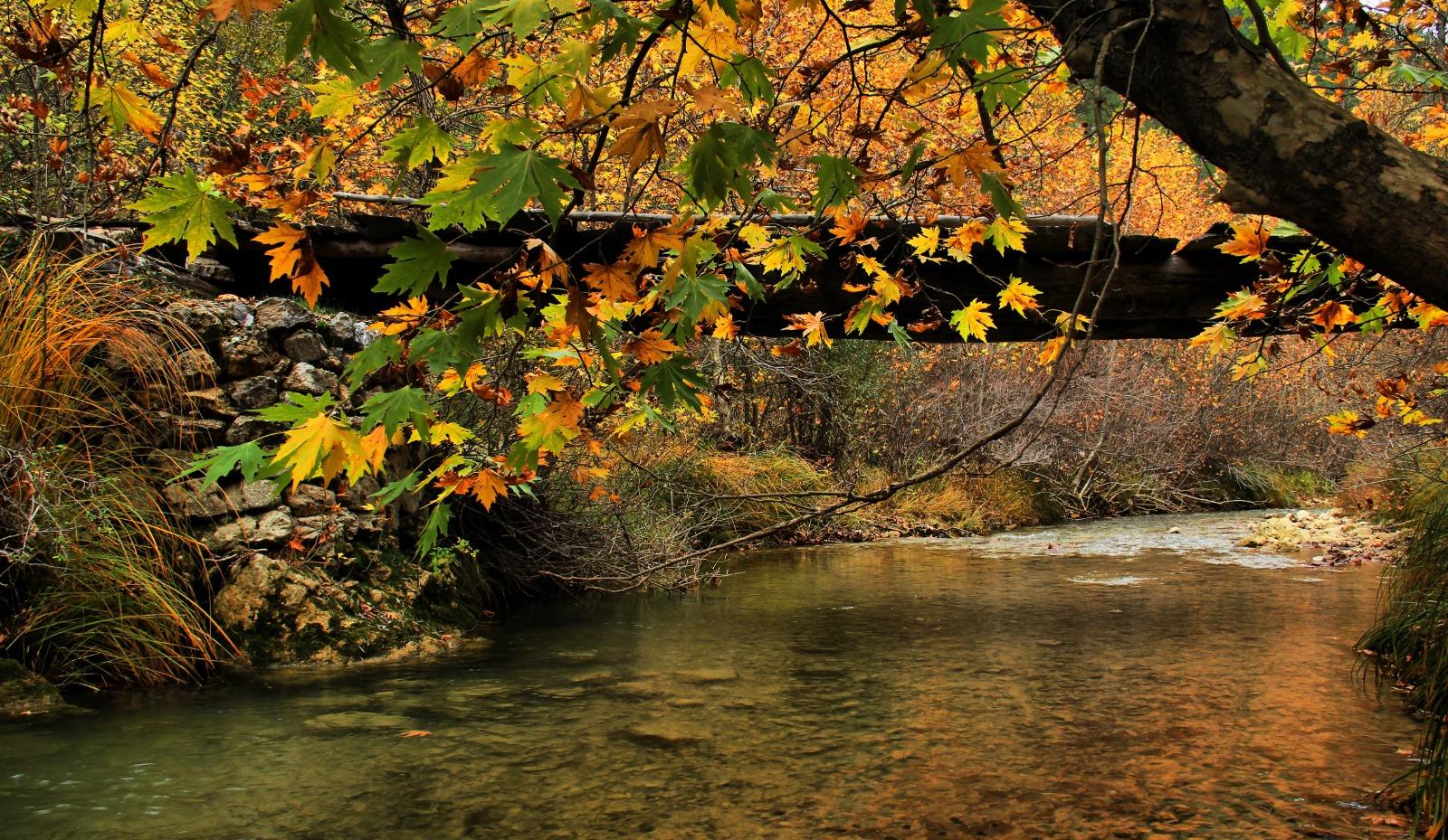 Mehmet Gören Göksun'un Sonbaharını Fotoğrafladı!